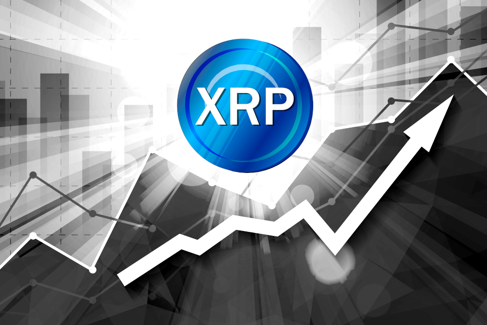 XRP Price on the Rise – up 8% in the Past 24 Hours