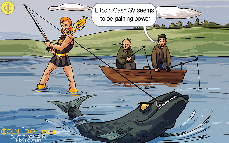 The Entire Crypto Market Sinks But Bitcoin Cash SV Seems to be Gaining Power