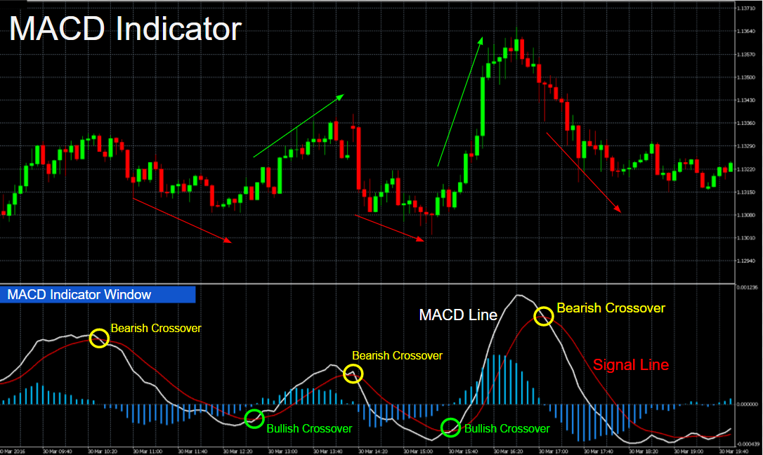 A Short and Exclusive Guide on MACD Indicator