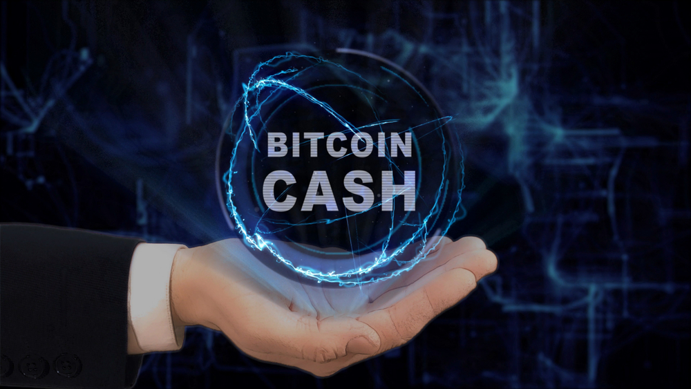 Bitcoin Cash Struggles At $165, Volume Halves As Key Ally Looks Shaky